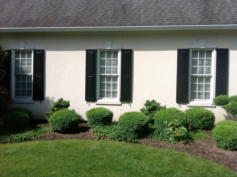 Exterior Enhancements: After. Shutters add dimension and interest